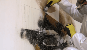North Atlanta Waterproofing prevents mold in your home